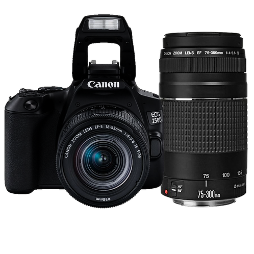 Canon EOS 250D Essential Double Lens Kit