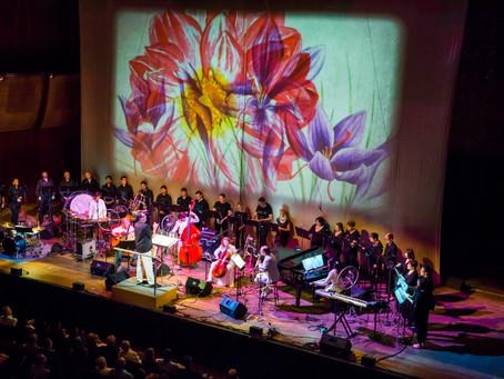 Art and Music Festival SOLUNA Events in Dallas 2019