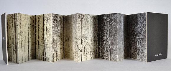 Labyrinth book