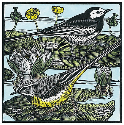 Wagtails and Waterlillies