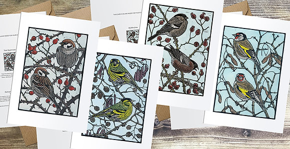 Tree Sparrows, Bullfinches, Siskins, Goldfinches A6 cards
