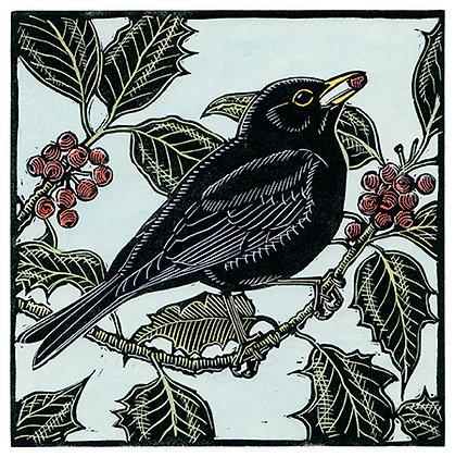 Blackbird and Holly