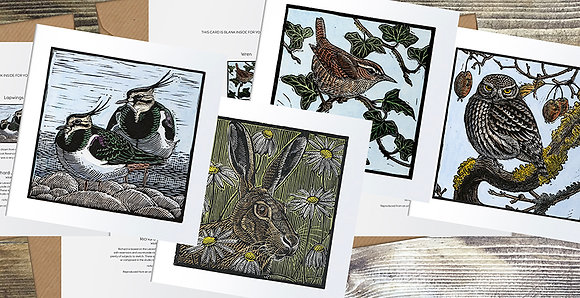 Wren and Ivy, Lapwings, Meadow Hare, Little Owl Square cards