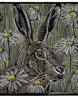 11 RWJ Print Meadow Hare LPW.jpg