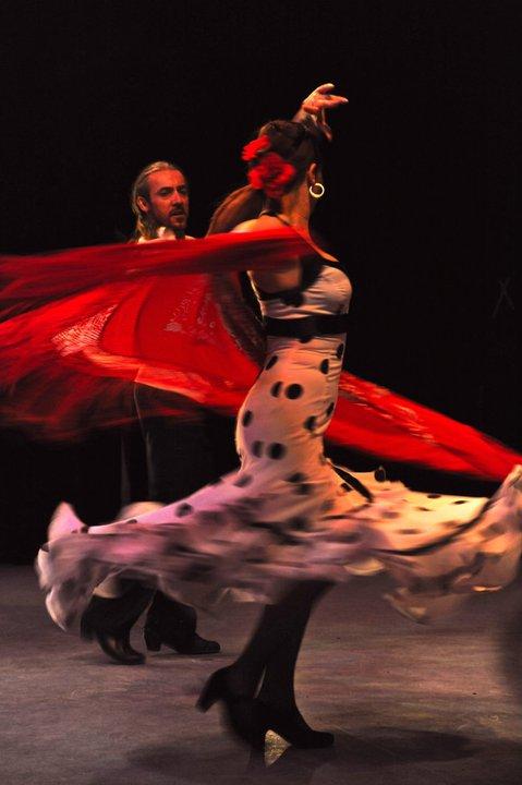 Flamenco Areti