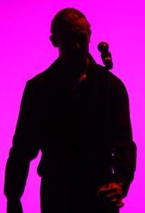 Flamenco Fire 2005