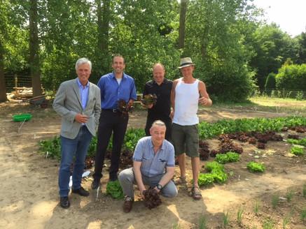 Burgemeesters en wethouders oogsten hun sla bij d'r Moostuin