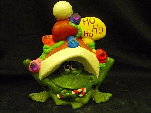 Frog in Santa Hat