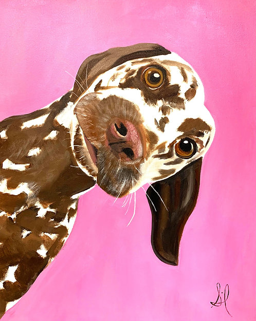 Lemondrop (The Dalmation) Painting