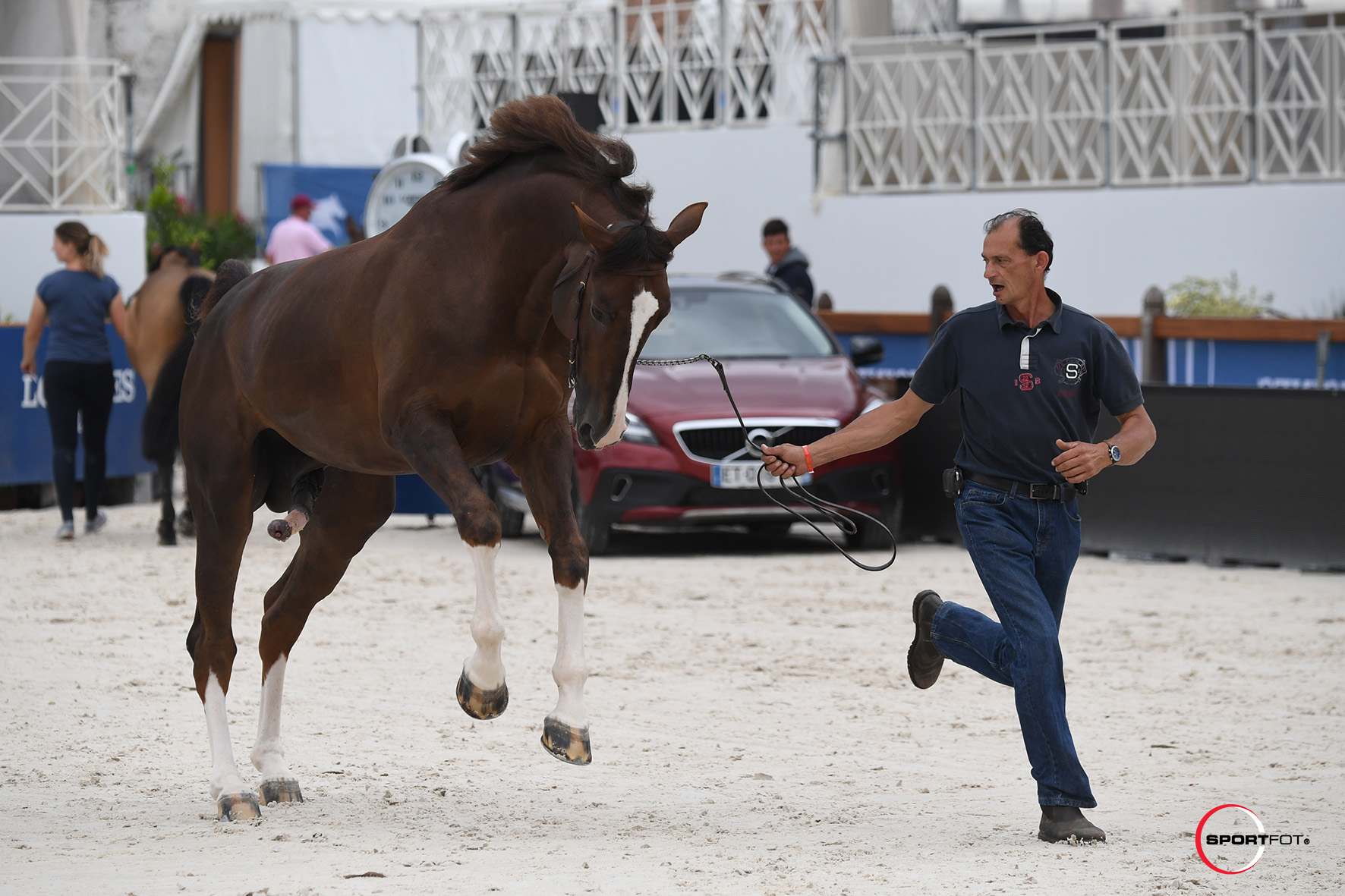 LGCTCannes2018_VetCheck_Claude-Groom-Bosty