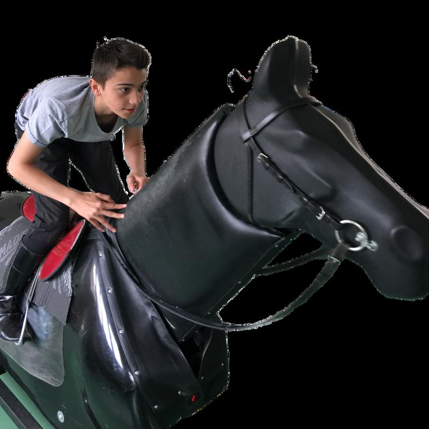 cheval_mécanique_5