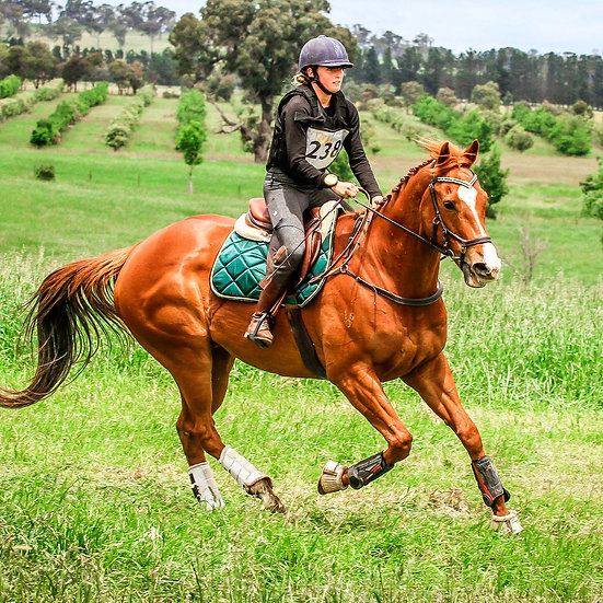 Gallant Green Saddle Pad