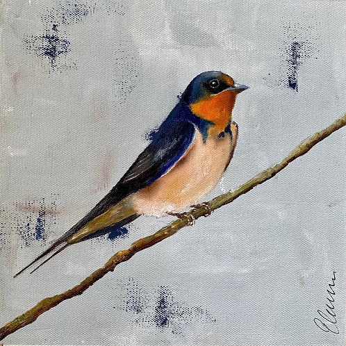 Resting Swallow