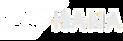 SAP_HANA_white.png