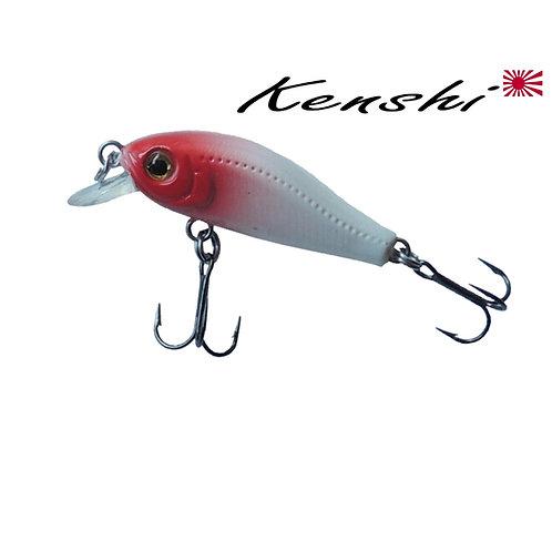 LEURRE KENSHI ISHIKARI MINI CURVED MINNOW 35MM  2G / 0 À 1,00M / FLOTTANT