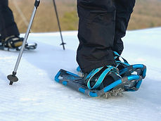 Snowshoe Single set close up.JPG