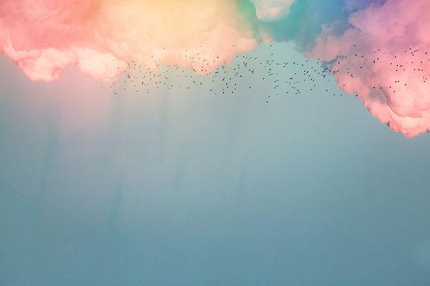 birds%2520flying%2520near%2520clouds_edi