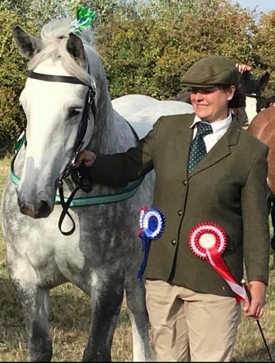 Medal Winning Horse