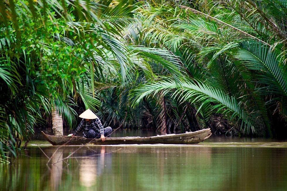 Vietnam Programas.jpg