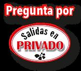 Salidas privado-01.png