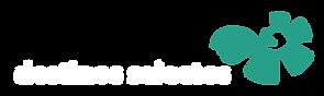 Logo Solaris Destinos 2020