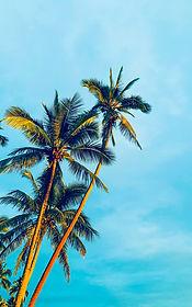 Oceania.jpg