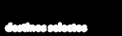 Logo Solaris Destinos 2020-05.png