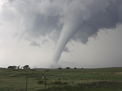 tornado website.jpg