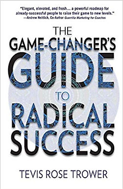 The Game Changer's Guide to Radical Success