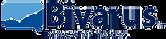 brivarus_logo_72x.png