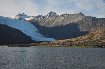Glacier cordillère de Darwin