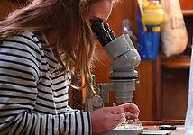 Photo microscope voilier.jpg