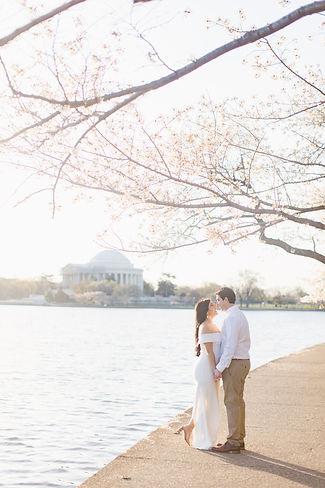 Washington DC Cherry Blossom Engagememen