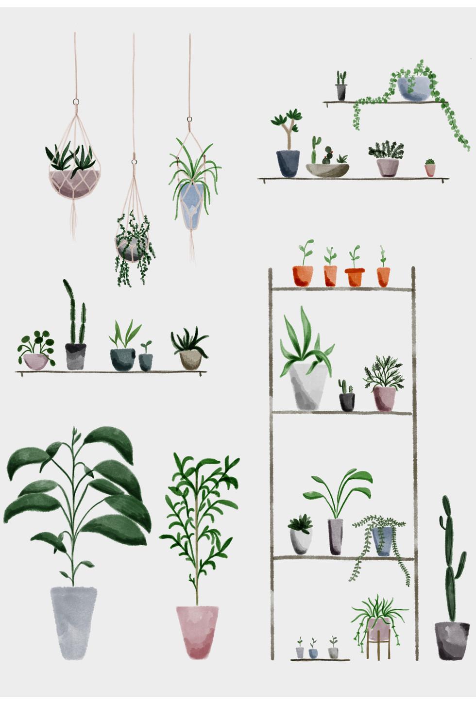 Botanical shop #2