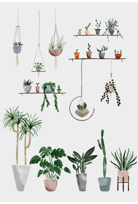 Botanical shop #1