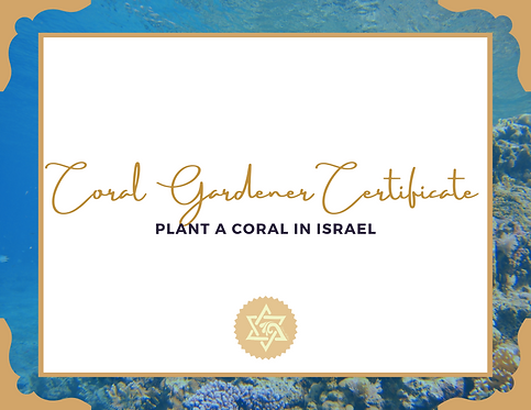 Plant a Coral