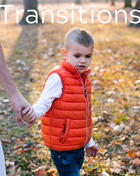 Transitions (1).png