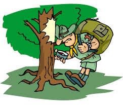 Twee gevulde dagen bosklassen zitten er al op...