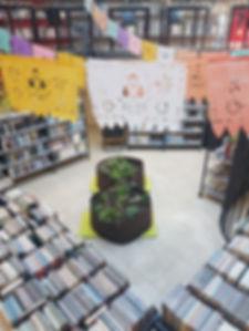 Plantations BO (1).jpg
