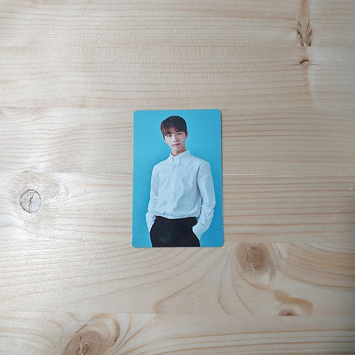 Seventeen - Dino Official Photocard