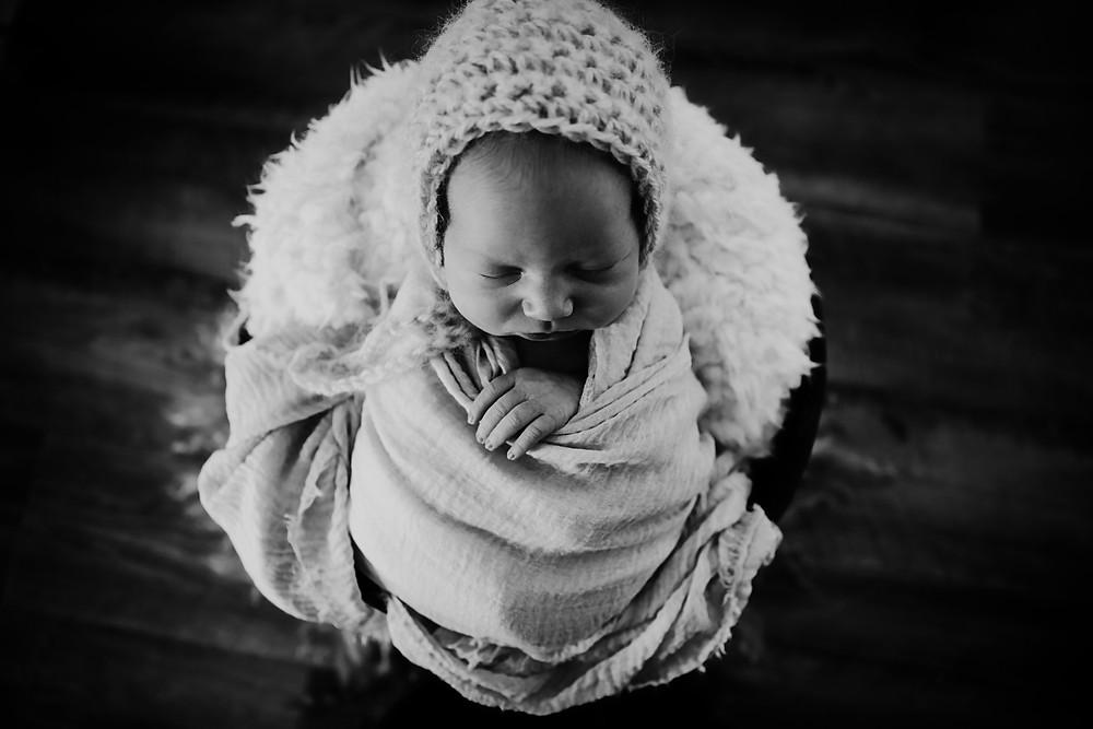 Hello Fox Photography Brisbane Newborn Photographer