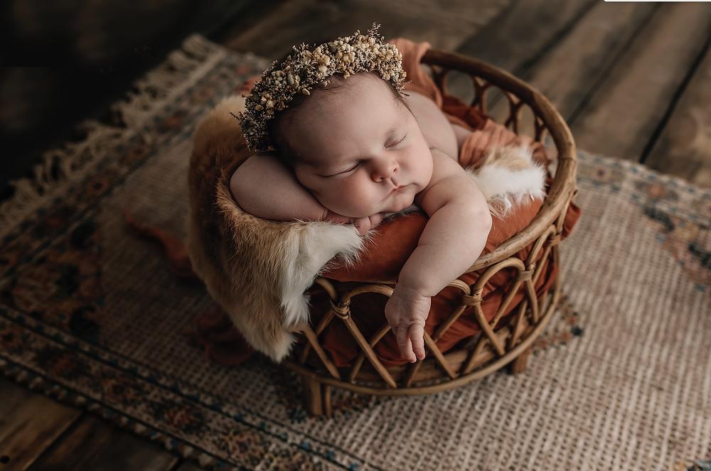 Hello Fox Photography Newborn Photography