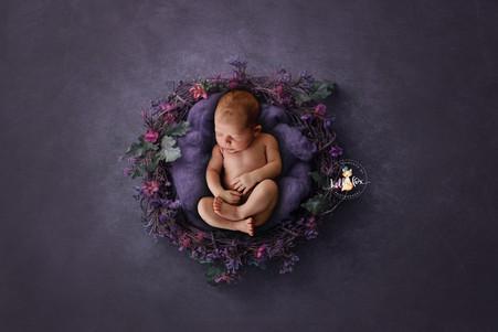 Miss Harper - Newborn Moments