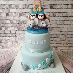 #noahsarccake #christeningcakes