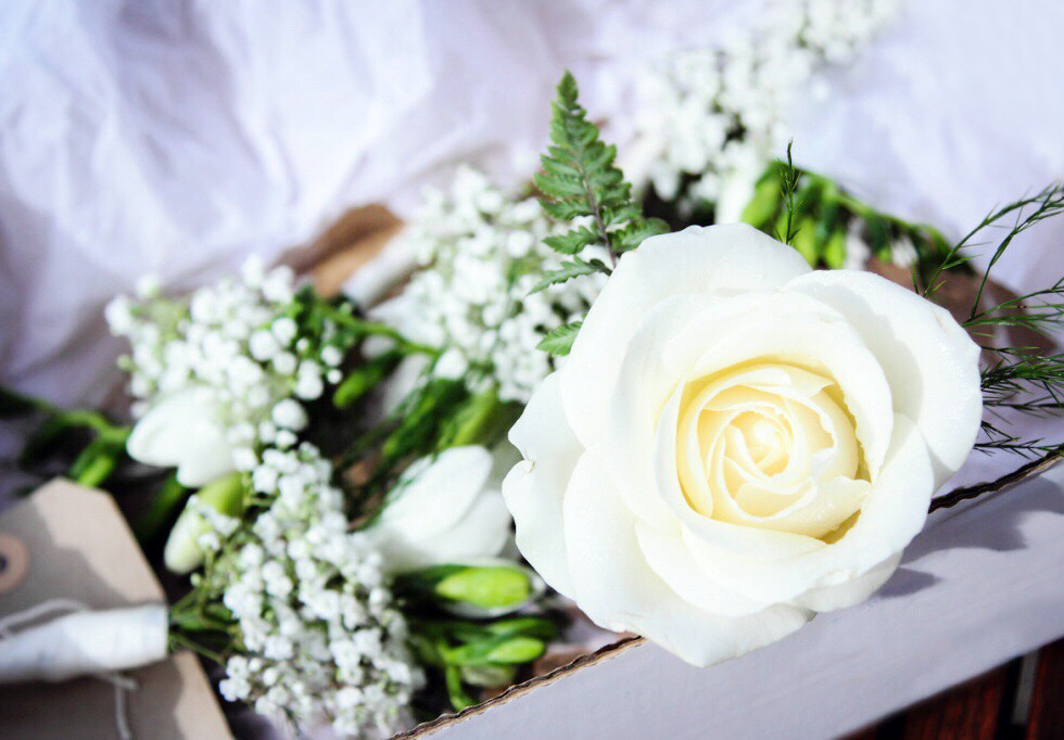 delicate white boutonnieres by buds to bouquets rose freesia gypsophila