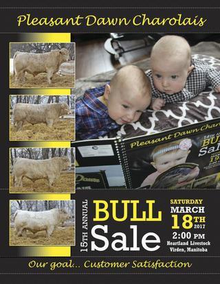 2017 bull sale catalogue.jpg