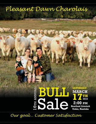 bull sale catalogue.jpg