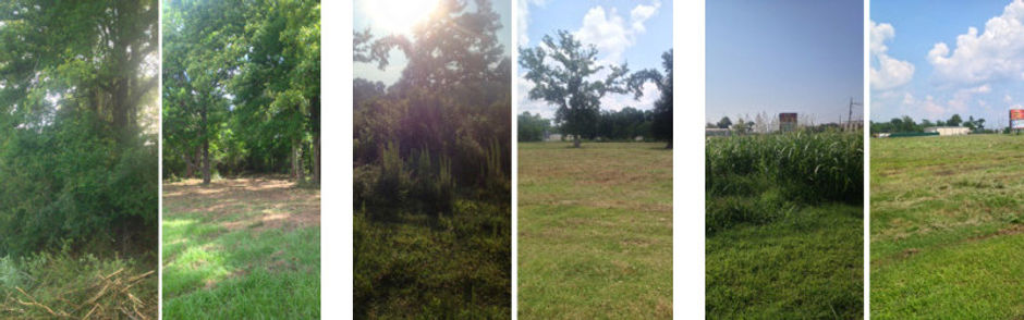 Bush Hog- Bush Hogging- Mowing- Tall Weeds- Overgrown Fields- Pasture Mowing- Residential Landscape-