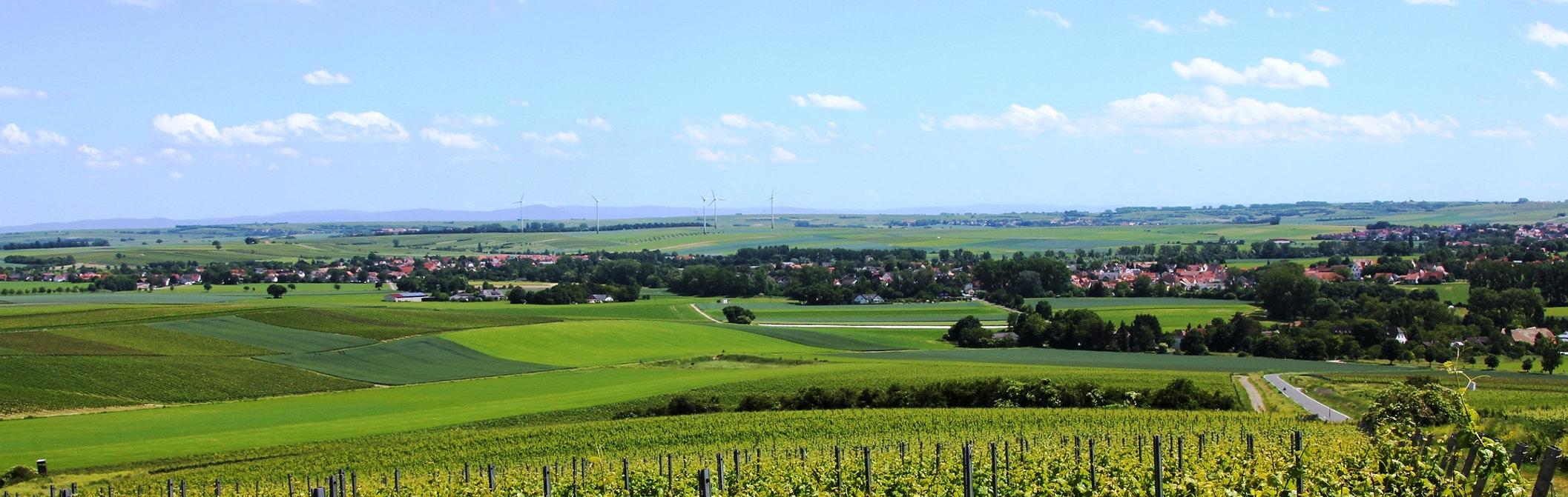 Hahnheim Panorama.jpg