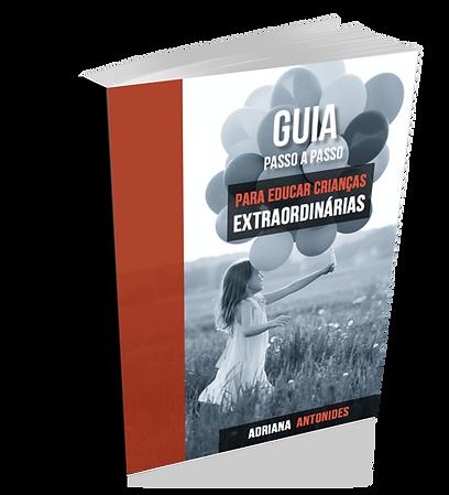 EBOOK GUIA2.png